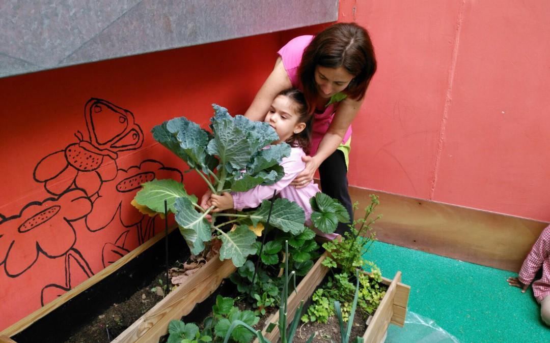 Los niños del Centro Entrepuentes han aprendido a comer sano y a respetar el medio ambiente